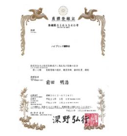 ハイブリッド鎮静法の特許